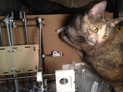 RepRap Cat