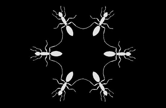 Ant Flake